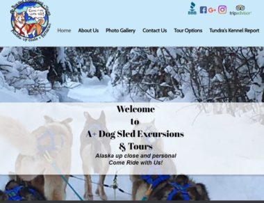 A+ Dogs Sled Excursions- Alaska